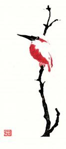 Eisvogel rot schwarz